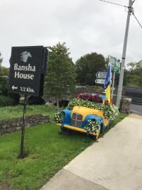Tidy Town Committee Bansha